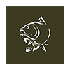 NASH_TV_Carp_Fishing
